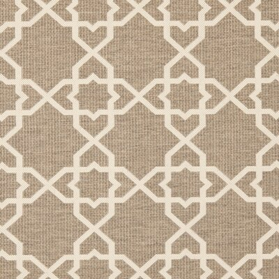 Jefferson Place Brown/Tan ndoor/Outdoor Area Rug Rug Size: Runner 27 x 82