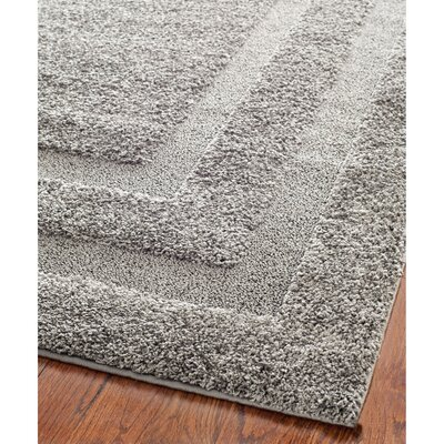 Altha Gray Area Rug Rug Size: Rectangle 53 x 76