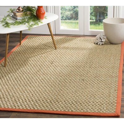 Mia Natural/Rust Area Rug Rug Size: 4 x 6