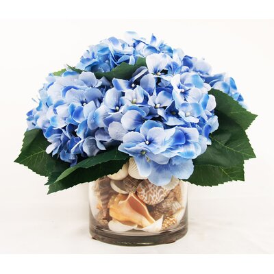 Hydrangea Sea Shell Pot
