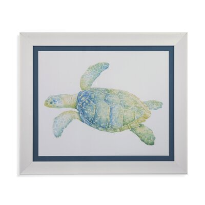 Tranquil Sea Turtle II Framed Painting Print BCHH3565 37479101