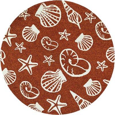 Monticello Cardita Shells Hand-Hooked Terracotta Indoor/Outdoor Area Rug Rug Size: Round 710