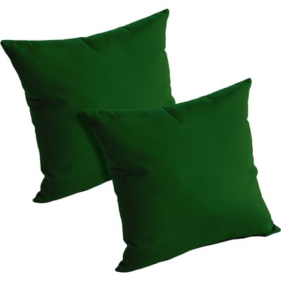 Mayson Outdoor Throw Pillow Color: Palm