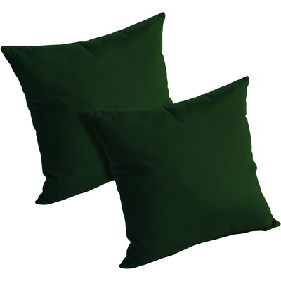 Mayson Outdoor Throw Pillow Color: Forest Green
