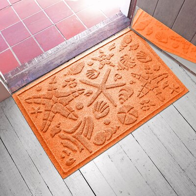 Anitra Beachcomber Doormat Color: Orange