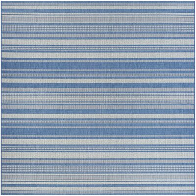 Anguila Stripe Blue/Gray Indoor/Outdoor Area Rug Rug Size: Square 76