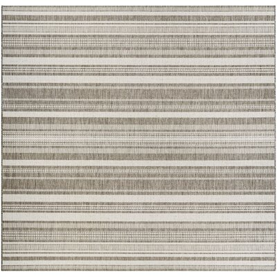 Anguila Stripe Gray/Beige Indoor/Outdoor Area Rug Rug Size: Square 86