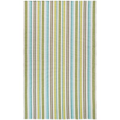 Artique Hand-Woven Caribbean Breeze/Green Area Rug Rug Size: Rectangle 5 x 8