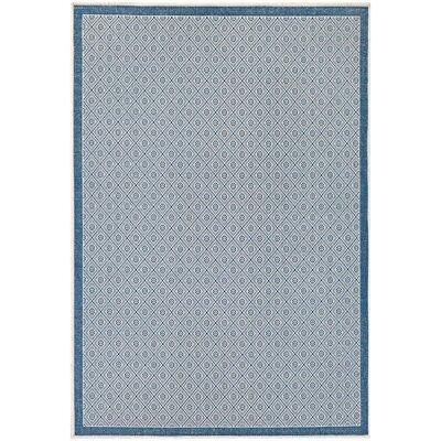 Wexford Blue Indoor/Outdoor Area Rug Rug Size: Runner 23 x 119