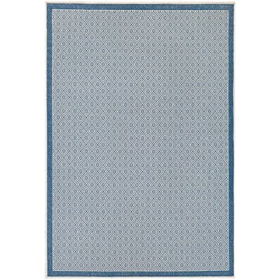 Wexford Blue Indoor/Outdoor Area Rug Rug Size: 76 x 109