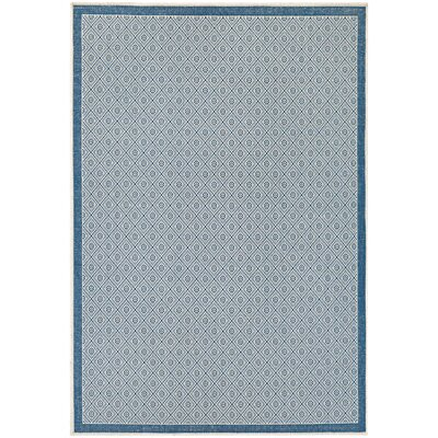 Wexford Blue Indoor/Outdoor Area Rug Rug Size: Rectangle 76 x 109