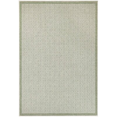 Wexford Sea Mist Indoor/Outdoor Area Rug Rug Size: 39 x 55
