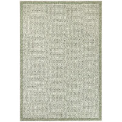 Wexford Sea Mist Indoor/Outdoor Area Rug Rug Size: Rectangle 3'9