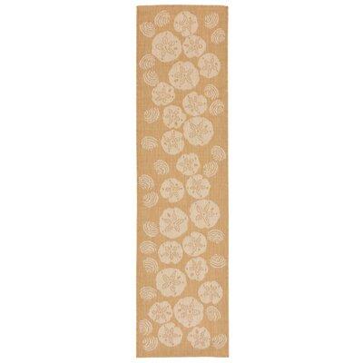 Clatterbuck Shell Toss Almond/Camel Indoor/Outdoor Area Rug Rug Size: Runner 111 x 76