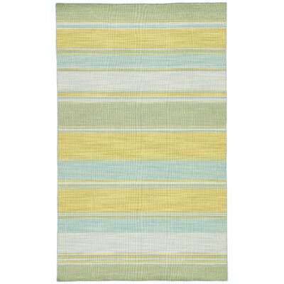 Everalda�Lime Green Area Rug Rug Size: Rectangle 2 x 3