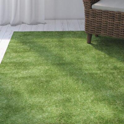 Parkton Artificial Grass Green Area Rug Rug Size: 5 x 8