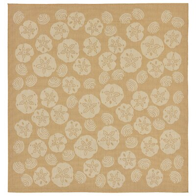 Clatterbuck Shell Toss Almond/Camel Indoor/Outdoor Area Rug Rug Size: Square 710