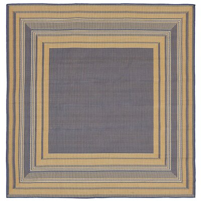 Clatterbuck Etched�Blue Indoor/Outdoor Area Rug Rug Size: Square 710