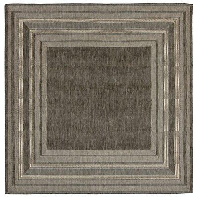Clatterbuck Etched Gray/Beige Indoor/Outdoor Area Rug Rug Size: Square 710