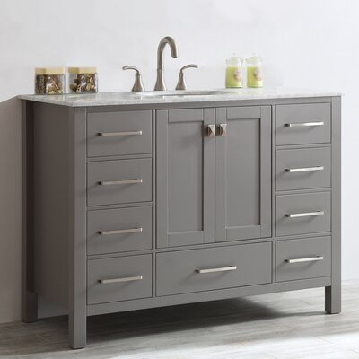 Newtown 48 Single Bathroom Vanity Set Base Finish: Gray