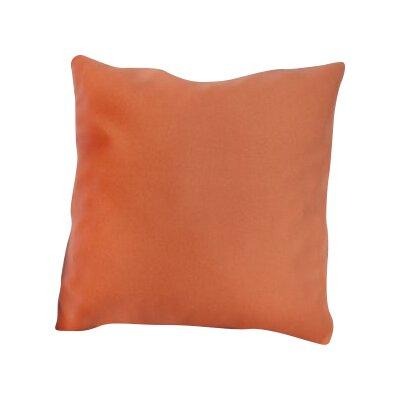 Mayson Outdoor Throw Pillow Color: Brick
