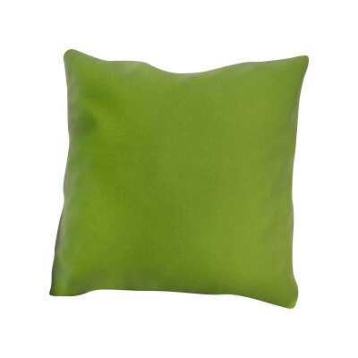 Mayson Outdoor Throw Pillow Color: Macaw