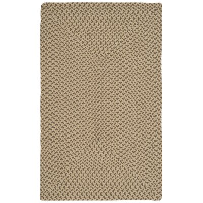 Lissie Hand-Woven Cotton Beige/Brown Area Rug Rug Size: Rectangle 26 x 4