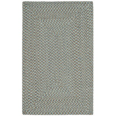 Lissie Hand-Woven Cotton Blue Area Rug Rug Size: Rectangle 26 x 4