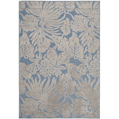 Patricia Blue Indoor/Outdoor Area Rug Rug Size: Rectangle 53 x 77