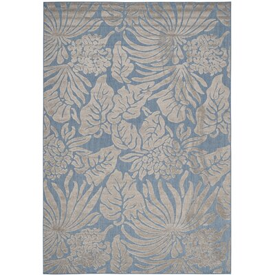 Patricia Blue Indoor/Outdoor Area Rug Rug Size: Rectangle 67 x 96