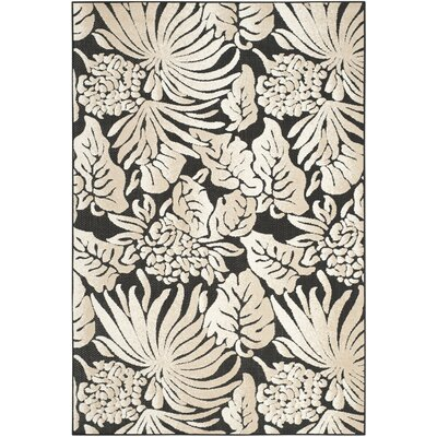 Patricia Black/Beige Indoor/Outdoor Area Rug Rug Size: Rectangle 53 x 77