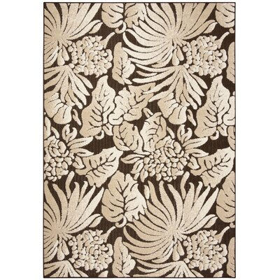 Patricia Brown Indoor / Outdoor Area Rug Rug Size: Rectangle 53 x 77