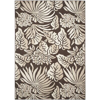 Patricia Brown Indoor / Outdoor Area Rug Rug Size: Rectangle 8 x 112