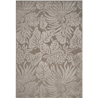 Patricia Area Rug Rug Size: Rectangle 67 x 96