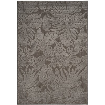 Patricia Area Rug Rug Size: Rectangle 53 x 77