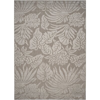 Patricia Area Rug Rug Size: Rectangle 8 x 112
