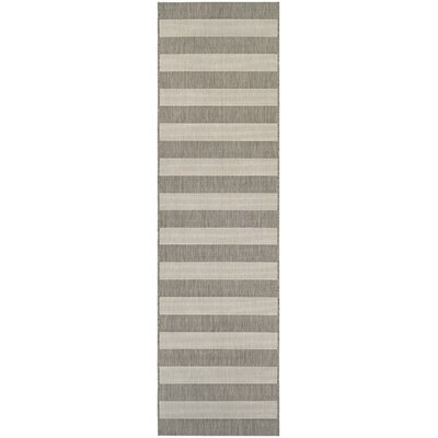 Gallinas Tan/Ivory Indoor/Outdoor Area Rug Rug Size: Runner 22 x 119