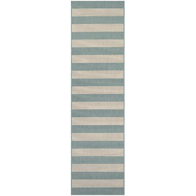 Gallinas Blue Indoor/Outdoor Area Rug Rug Size: Runner 22 x 119