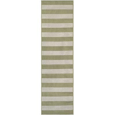 Gallinas Honey/Ivory Indoor/Outdoor Area Rug Rug Size: Runner 22 x 119