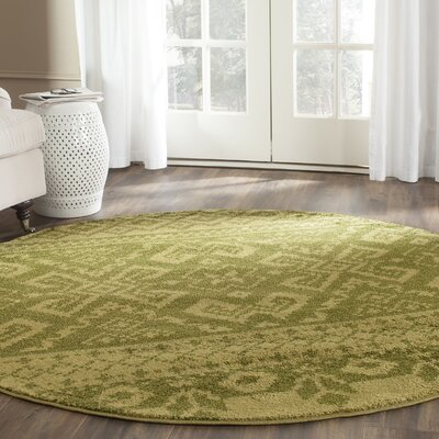 St. Ann Highlands Olive Green Area Rug Rug Size: Rectangle 9 x 12