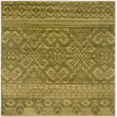 St. Ann Highlands Olive Green Area Rug Rug Size: Square 4