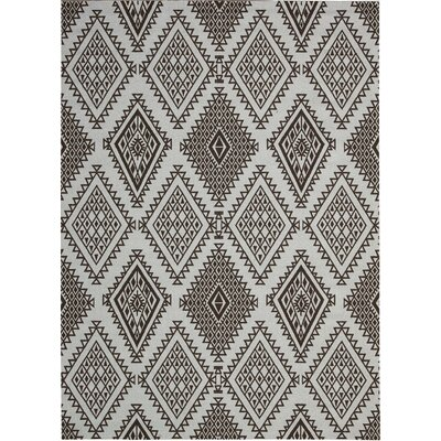 Kingfisher Brown Area Rug Rug Size: Rectangle 26 x 4