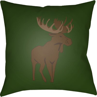 Dove Valley Indoor/Outdoor Throw Pillow Size: 18 H x 18 W x 4 D, Color: Green