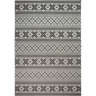 Mizpah Charcoal Indoor/Outdoor Area Rug Rug Size: 77 x 1010