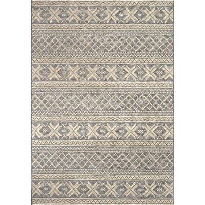 Mizpah Gray Indoor/Outdoor Area Rug Rug Size: 77 x 1010