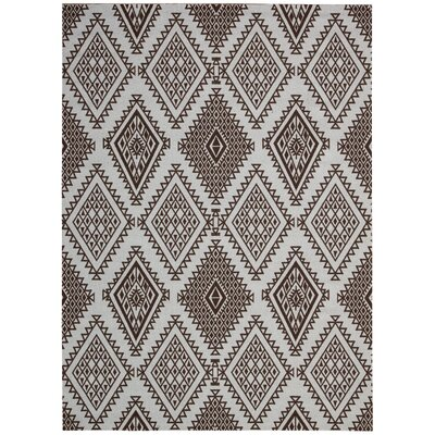 Kingfisher Brown Area Rug Rug Size: 5 x 7
