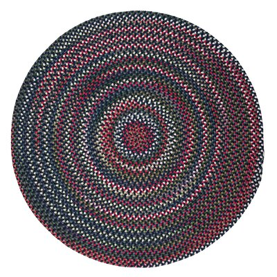 Roxborough Park Baltic Blue Area Rug Rug Size: Round 4