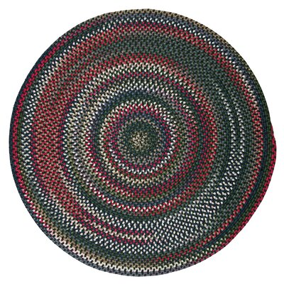 Roxborough Park Thyme Green Area Rug Rug Size: Round 6