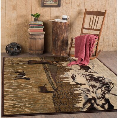 Cocheta Brown Area Rug Rug Size: Rectangle 710 x 103