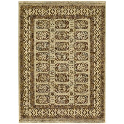 Capsicum Antique Cream Area Rug Rug Size: 53 x 76